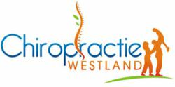 Dr. Alan Jenks - Chiropractie Westland